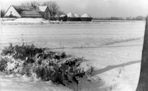 Boerderij Hazelarenbosch