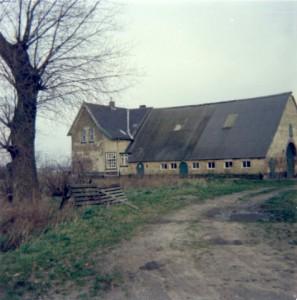 hazelarenbosch2