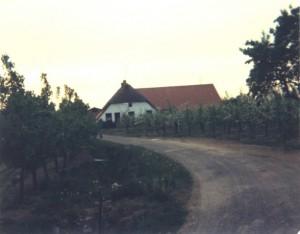 Broekstraat 114 2